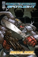 transformers-comic-spotlight-grimlock-cover-a